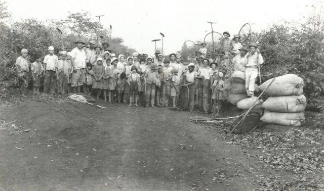 Brasileiros de outras regiões e imigrantes ajudaram a construir o Paraná